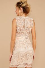 6 Whispered Thoughts Beige Lace Dress at reddressboutique.com