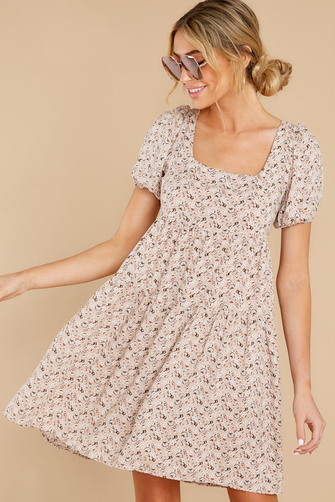 1 Picnic At Noon Blush Pink Gingham Dress at reddress.com