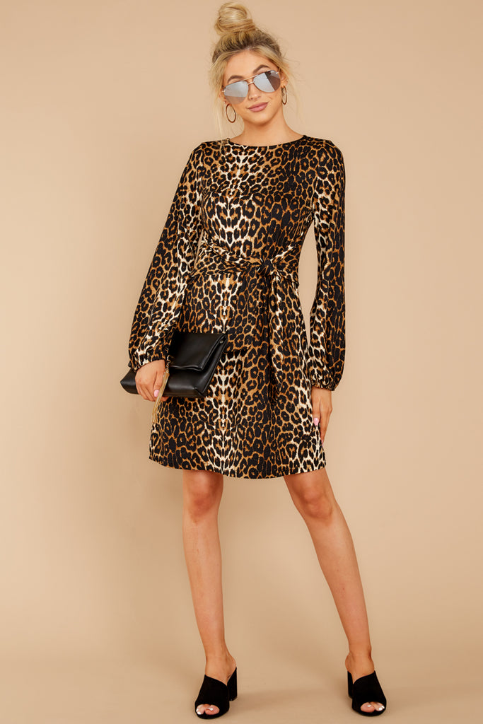 5 Blog Poster Black Leopard Print Dress at reddressboutique.com