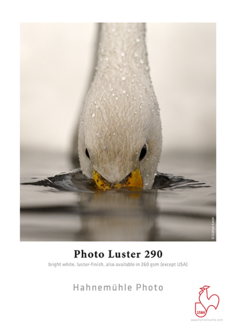 "Hahnemuhle - Photo Luster 8.5""x11"", 25 sheets"