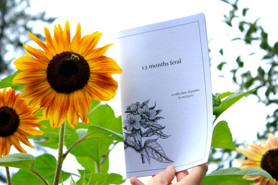 13 months feral - andi's poetry chapbook