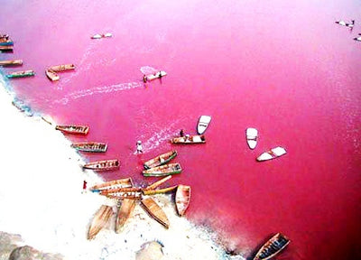 50 Shades of Pink: Le Lac Rose