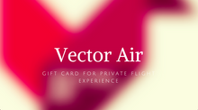 Gift Card for private flight experience