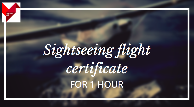 Gift Certificate for 1h sightseeing flight with Cessna T206