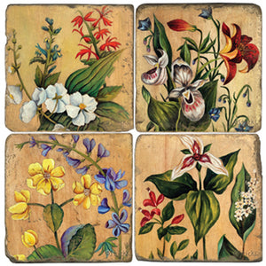 Beautiful varieties of flowers on a neutral wood grain background coaster set