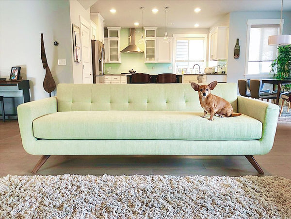 The Cooper Sofa Is A True Mid Century Modern Couch Perch Furniture