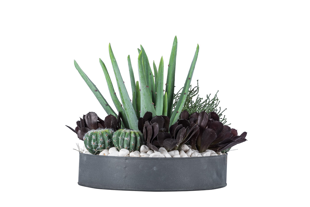 "12"" Metal Bowl with Succulents   AR1039"