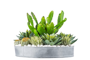 "16"" W Metal Bowl with Succulents AR1040"