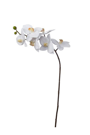 "28"" Phalaenopsis 6 Flowers with Dark Stem   FL1008"