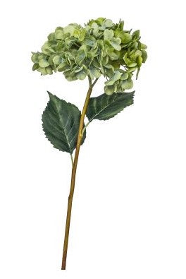 "24.5"" Green Hydrangea Spray with 2 Leaves  FL1010"