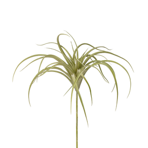 "9"" Green Airplant AP1004"
