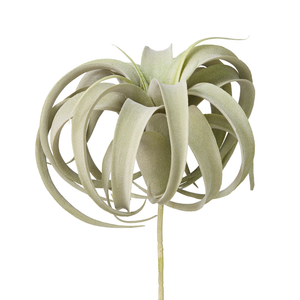 "10"" Green Airplant AP1008"