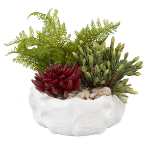 "10.5"" White Bowl with Succulents AR1002"