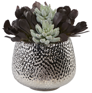 Silver Dimpled Bowl with Mixed Succulents AR1007