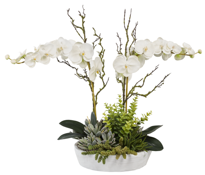 White Sedona Wood Bowl with Orchids and Mixed Succulents AR1024