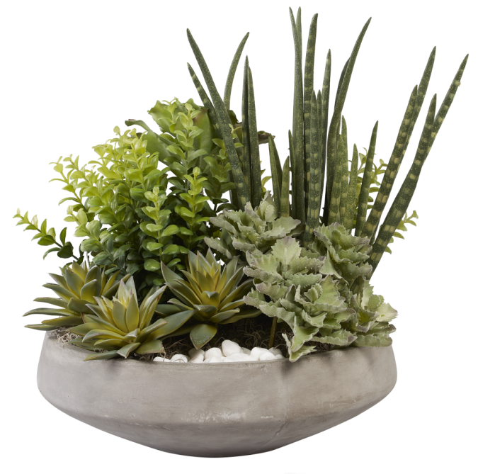 "15""W Concrete Bowl with Mixed Succulents AR1029"