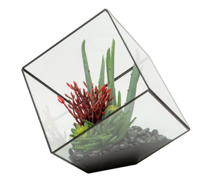 "10"" Black Berkley Terrarium Arrangement AR1129"
