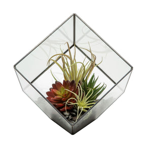 "7"" Black Berkley Terrarium Arrangement AR1130"