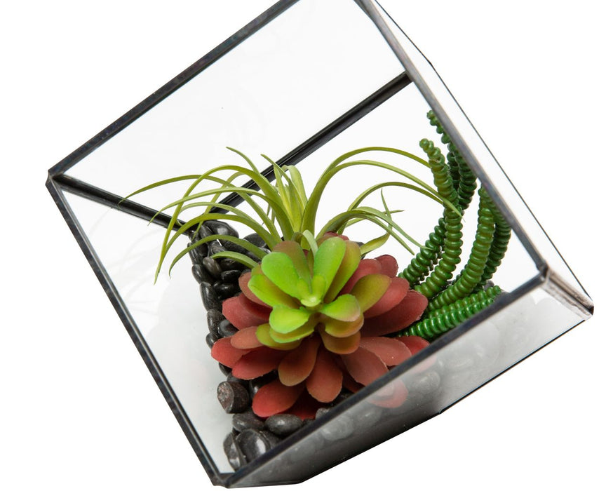 "5"" Black Berkley Terrarium Arrangement AR1131"