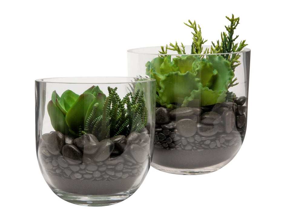 Colie Bowl Set with Succulent Arrangment  AR1174