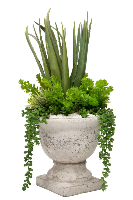 "9""H Concrete Urn Aloe Arrangement AR1183"