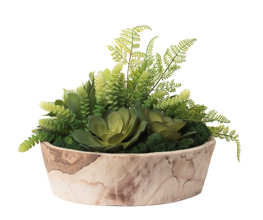 "15"" Sedona Bowl with Succulent and Fern Arrangement AR1221"