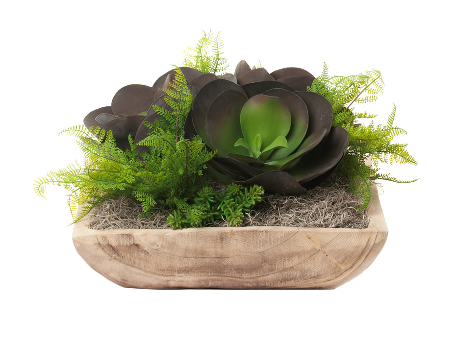"17"" Sedona Square Bowl with Succulent Arrangment  AR1234"