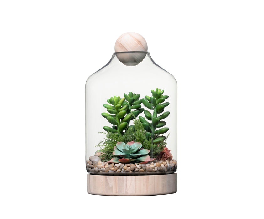 "19"" Chileno Terrarium with Succulent Arrangement   AR1336"