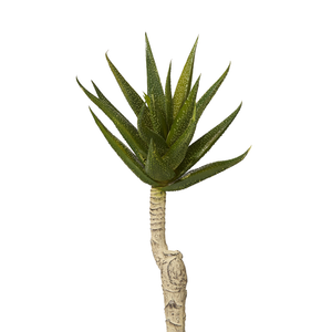 "8"" Green Aloe Stem AV1001"