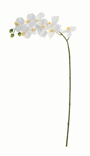 "32"" Real Touch Phalaenopsis- White   FL1025"