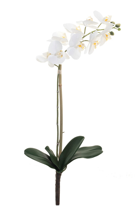 "27"" Real Touch Phalaenopsis- White     FL1026"
