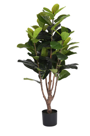 4' FIddle Leaf Fig Tree    FP1075