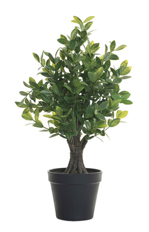 "18"" Potted Lemon Tree-No Fruit   PP1021"