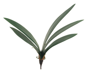 "23"" Orchid Leaves Stem ST1074"