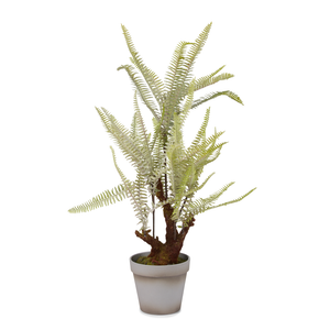 "18"" Potted Fern Plant   PP1003"