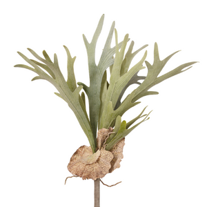 "22"" Flocked Staghorn Fern  ST1005"