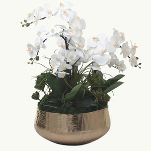 Orchid Arrangement in Metal Gold Bowl AR1093