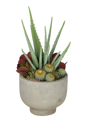 "12""W Concrete Compote Bowl with Aloe & Mixed Succulents AR1068"