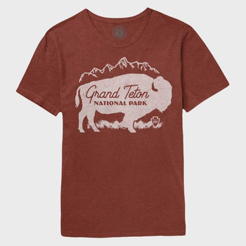 product: Parks Project Grand Teton Buffalo Mtn Tee Rust