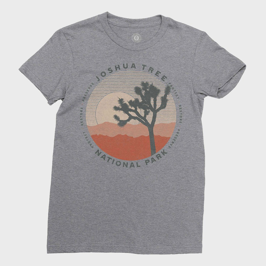 Parks Project Women's Joshua Tree Layers T-shirt Heather Grey