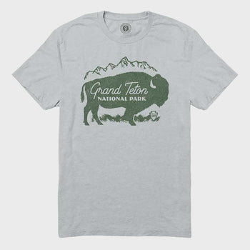 product: Parks Project Grand Teton Buffalo Mtn Tee New Silver