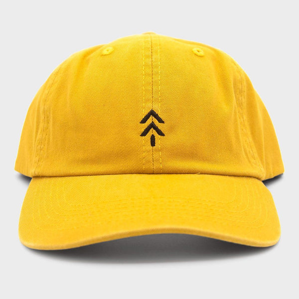 product: Parks Project Trail Arrow Baseball Hat Yellow