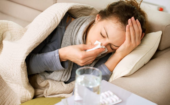 Top 6 Natural Antibiotics for Cold and Flu Season