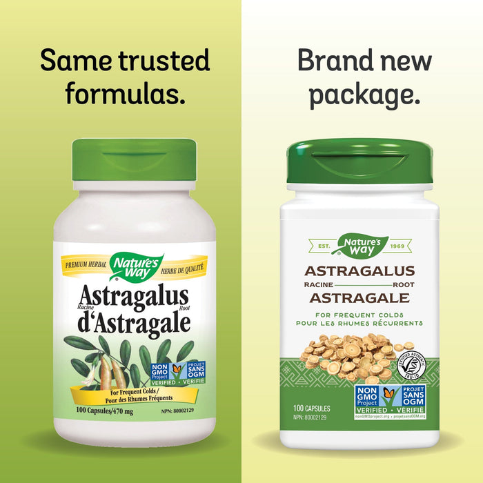 Nature's Way Astragalus Root