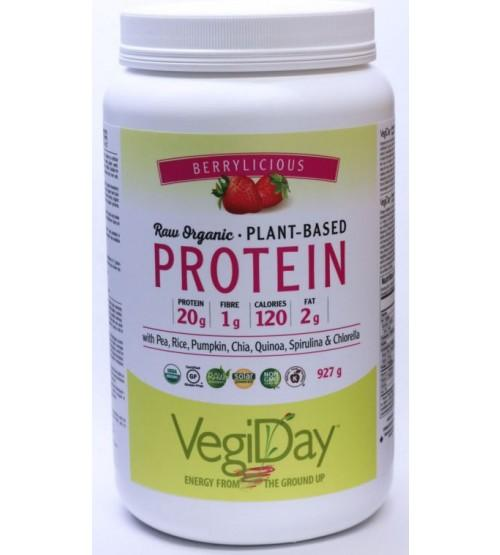 VegiDay Raw Organic Plant Based Protein Berrylicious