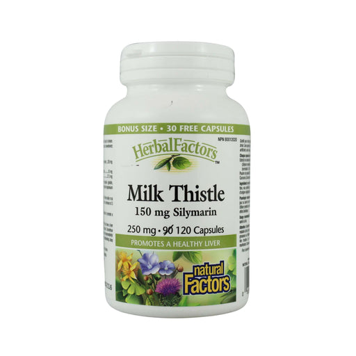 Natural Factors Milk Thistle - Bonus Size