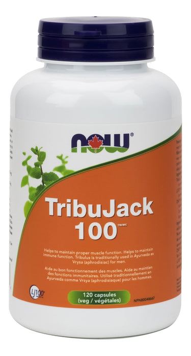 NOW TribuJack 100 with Lj100 Longjack and Zma 120 V-Caps