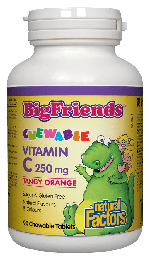 Natural Factors Big Friends Vitamin C 250 mg Tangy Orange 90 Chewable Tablets