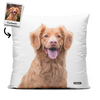 Pet Art - Custom - Throw Pillow