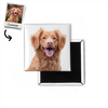 Pet Art - Custom - Magnet